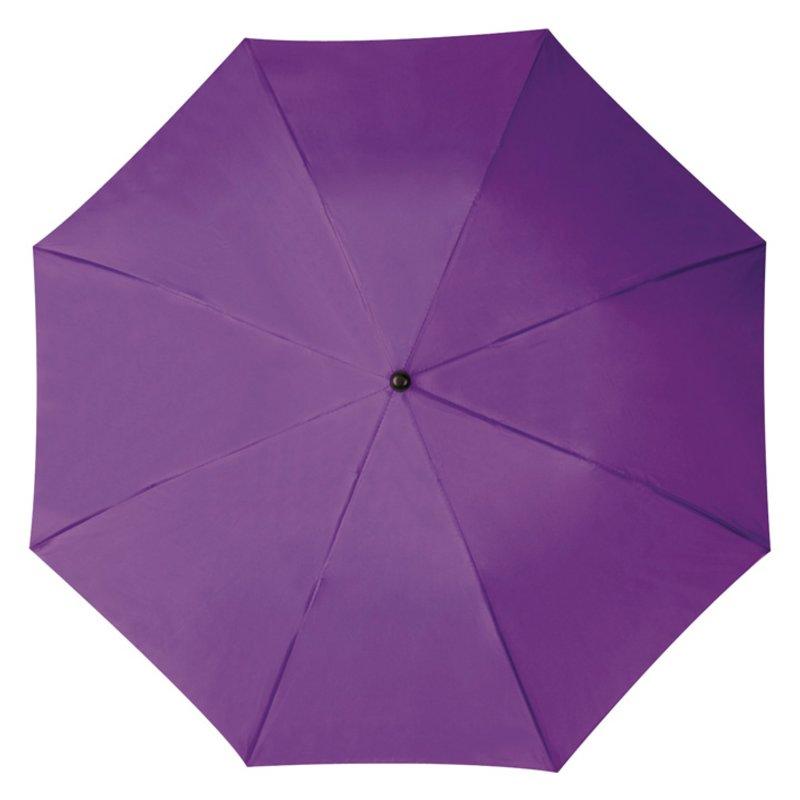 4518899 violet deschisa