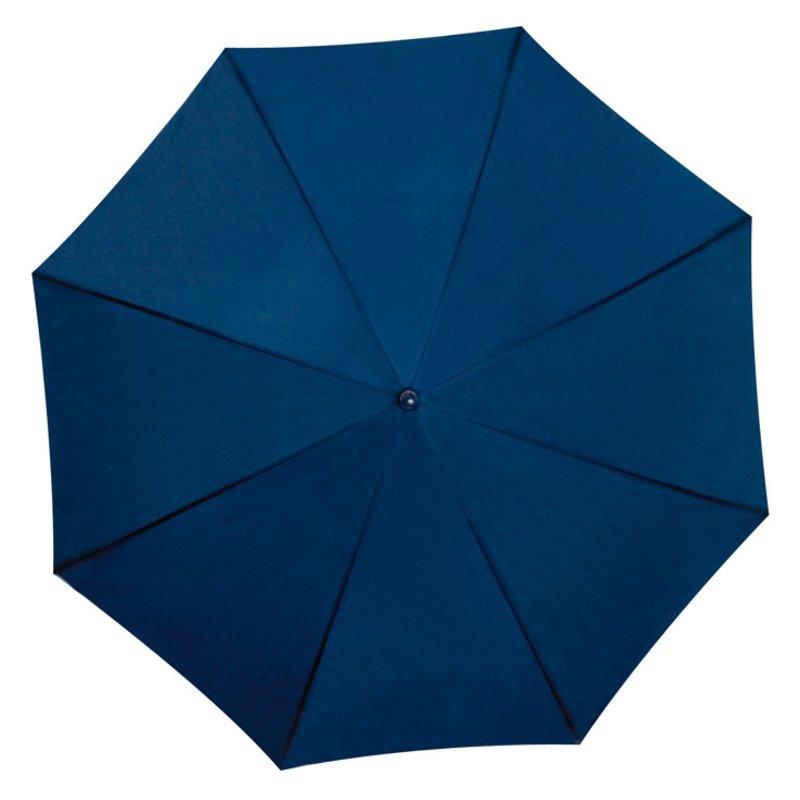 B45202 albastra privita de sus