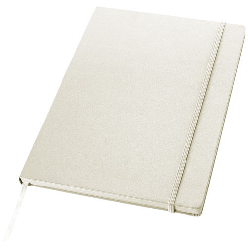 Notes B106263 alb